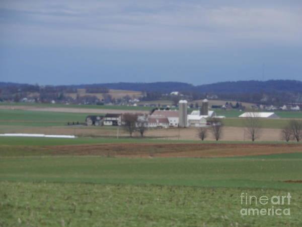 Amish Homestead 3 Art Print