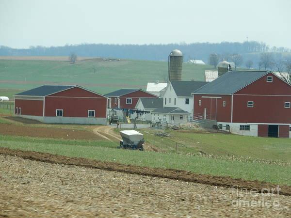 Amish Homestead 6 Art Print
