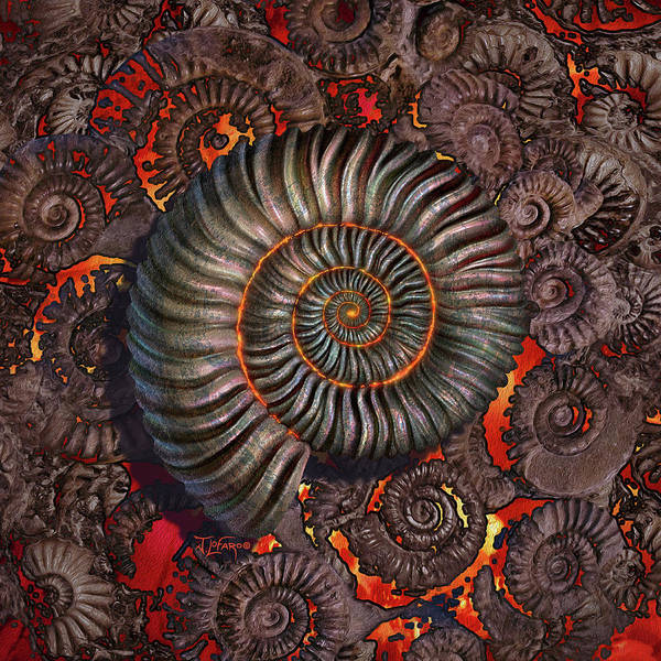 Fossil Wall Art - Photograph - Ammonite 2 by Jerry LoFaro