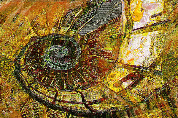 Fossil Wall Art - Painting - Ammonite by Anne Weirich