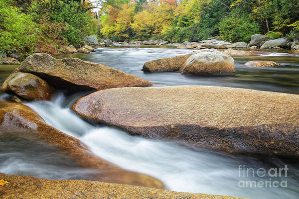 Photograph - Ammonoosuc River - Carroll New Hampshire  by Erin Paul Donovan
