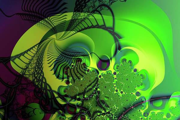 Digital Art - Amoeba by Frederic Durville