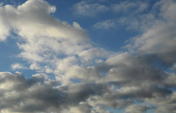Photograph - Among The Clouds by Karen Harrison