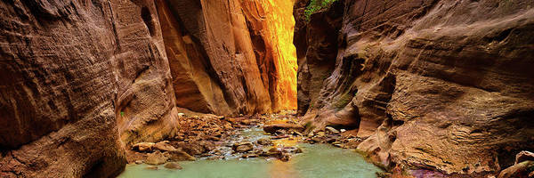 Wall Art - Photograph - Among The Narrows - Craigbill.com - Open Edition by Craig Bill