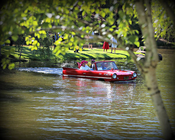 Photograph - Amphicar Swimming by Steve Natale