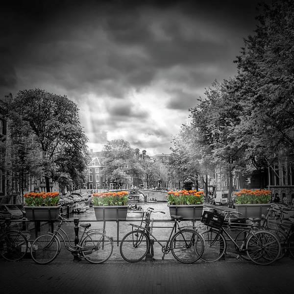 Dutch Tulip Photograph - Amsterdam Gentlemen's Canal by Melanie Viola
