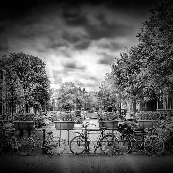 Dutch Tulip Photograph - Amsterdam Gentlemen's Canal - Monochrome by Melanie Viola