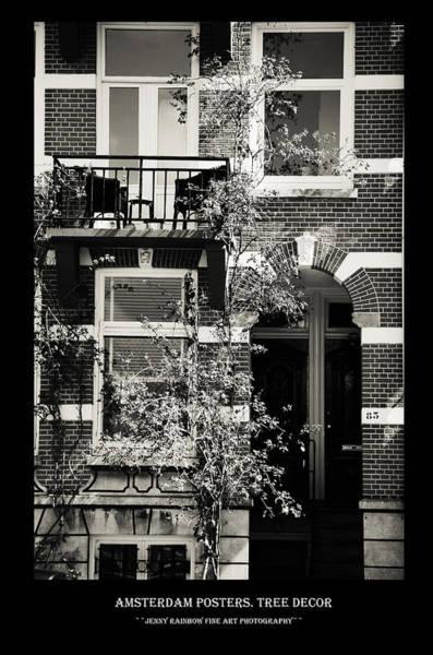 Wall Art - Photograph - Amsterdam Posters. Tree Decor by Jenny Rainbow