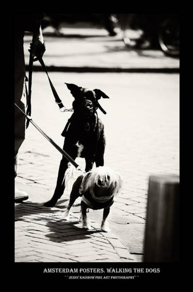 Wall Art - Photograph - Amsterdam Posters. Walking The Dogs by Jenny Rainbow