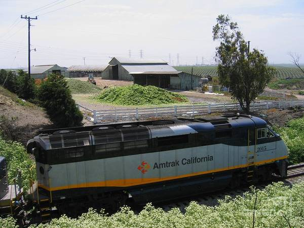 Photograph - Amtrak California 2015 by James B Toy