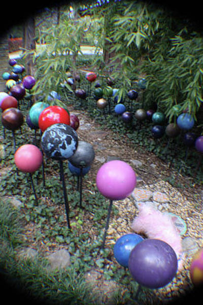 Photograph - Amy's Bowling Balls by Kasey Jones