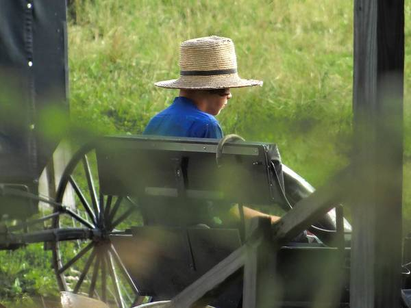 Photograph - An Amish Boy's Profile by Jenny Regan