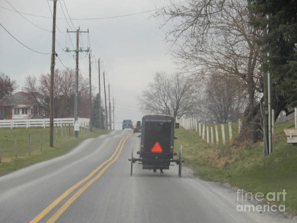 Photograph - An Amish Buggy In April by Christine Clark