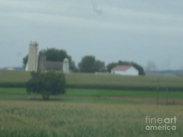 Photograph - An Amish Farm In August by Christine Clark