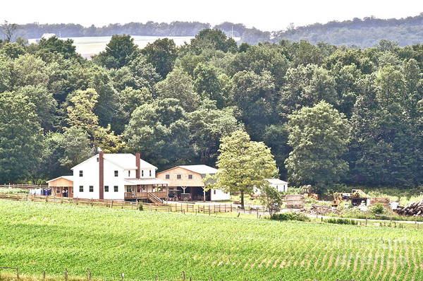 Somerset County Photograph - An Amish Farm by Penny Neimiller
