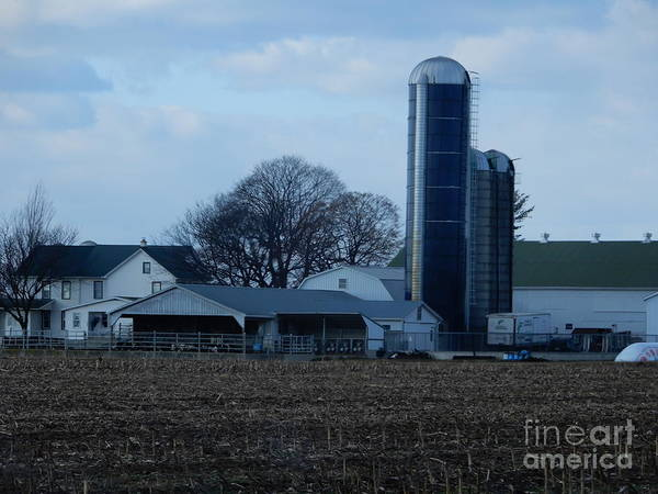 Photograph - An Amish Farm Two by Christine Clark