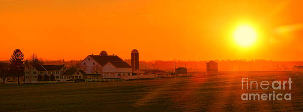 Photograph - An Amish Sunset by Olivier Le Queinec