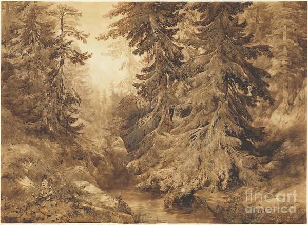 Wall Art - Drawing - An Ancient Pine Forest With A Mountain Stream by Alexandre Calame