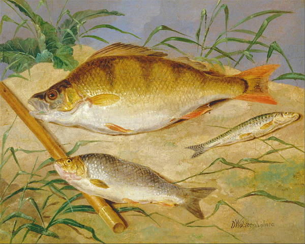 Angler Art Painting - An Anglers Catch Of Coarse Fish Ca. 1850 by Dean Wolstenholme The Younger