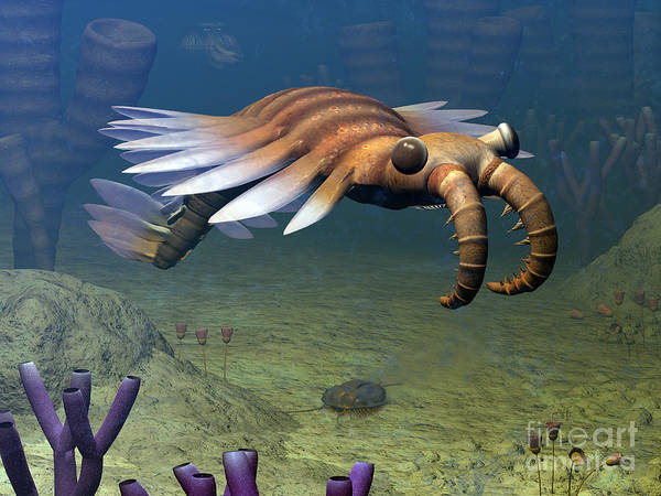 Paleobotany Digital Art - An Anomalocaris Explores A Middle by Walter Myers