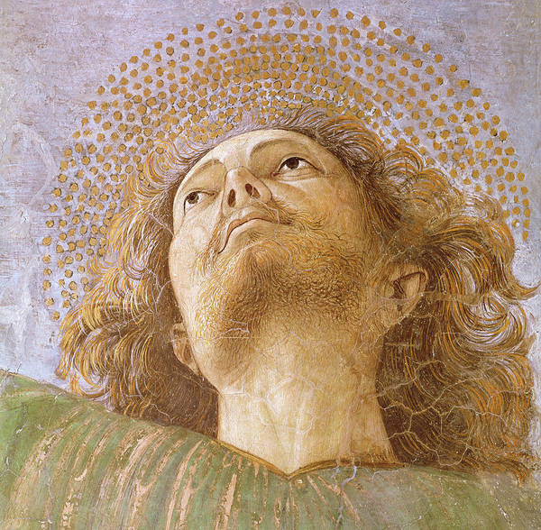 Wall Art - Painting - An Apostle by Melozzo da Forli