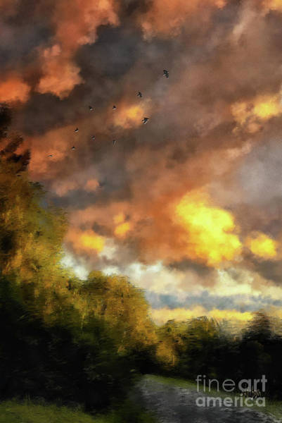 Bird In Flight Digital Art - An August Sunset by Lois Bryan
