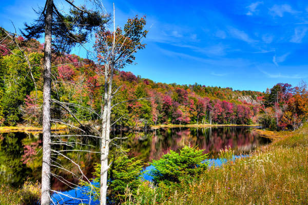 Photograph - An Autumn Afternoon At Bald Mountain Pond by David Patterson