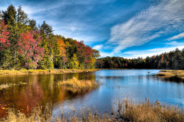 Photograph - An Autumn Day At Fly Pond by David Patterson
