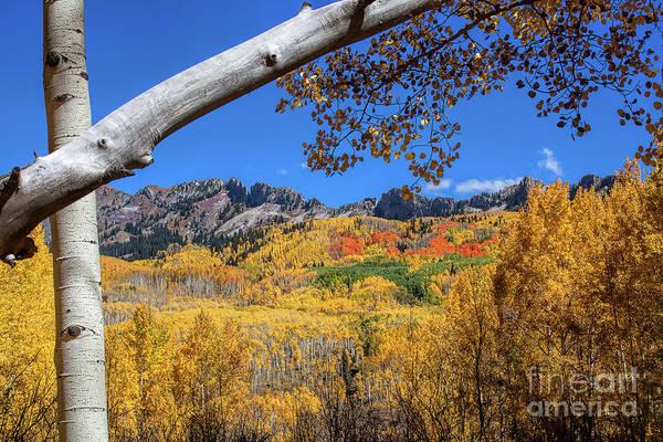 Photograph - An Autumn Window by Jim Garrison