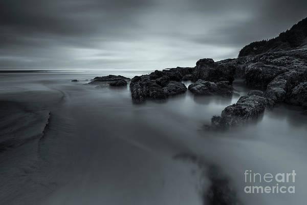 Dim Photograph - An Early Morning by Masako Metz