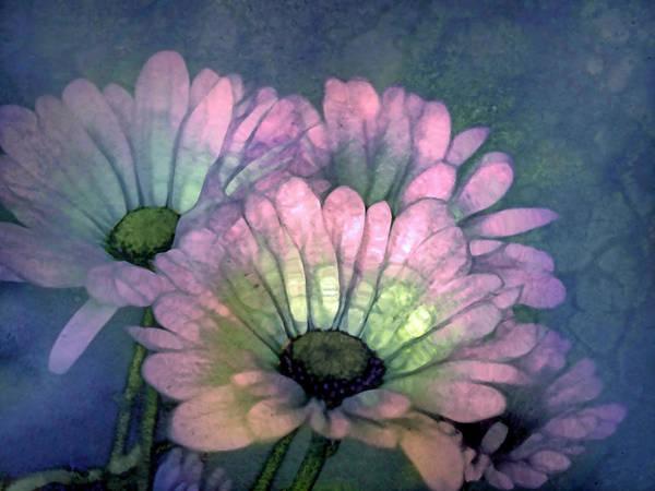 Photograph - An Inner Glow by Tara Turner
