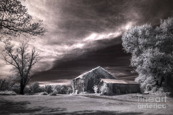 High Dynamic Range Digital Art - An Ivy Covered Rustic by William Fields