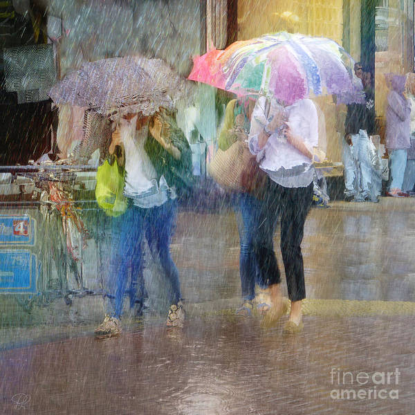 Photograph - An Odd Sharp Shower by LemonArt Photography