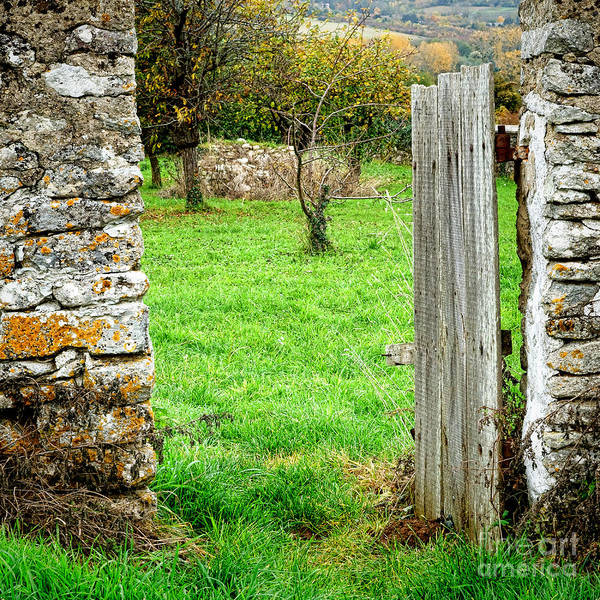 Village Gate Photograph - An Old French Orchard by Olivier Le Queinec