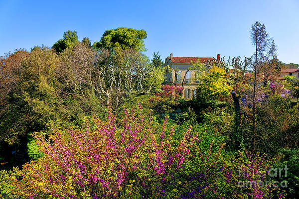 Photograph - An Old House In Provence by Olivier Le Queinec