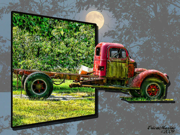Photograph - An Old Relic by Ericamaxine Price