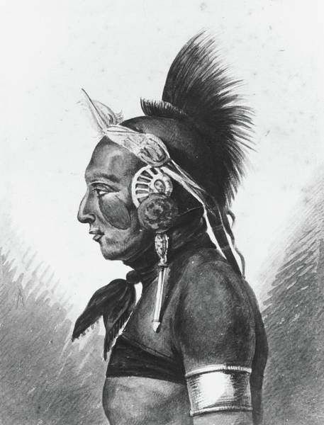 Wall Art - Painting - An Osage Warrior by MotionAge Designs