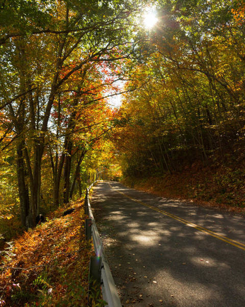 Photograph - An Unexpected Autumn Road by Kirkodd Photography Of New England