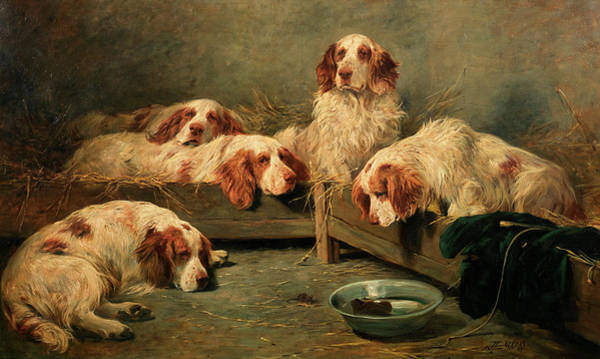 Unexpected Painting - An Unexpected Visitor - Clumber Spaniels In A Kennel by John Emms