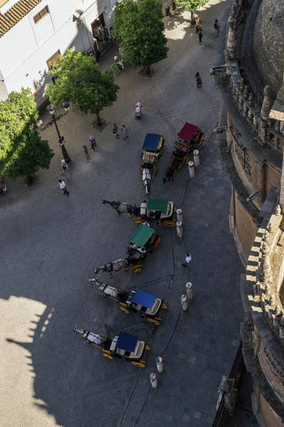 Photograph - An Unusual Perspective On The Charming Horse Drawn Carriages In Seville Spain by Georgia Mizuleva