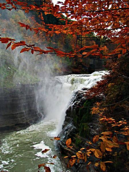 Western New York Wall Art - Photograph - An Upper Letchworth Autumn by Lianne Schneider