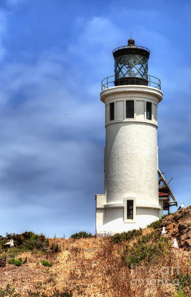 Wall Art - Photograph - Anacapa Island Lighthouse by Eddie Yerkish