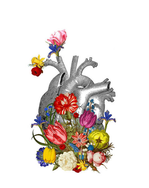 Blue Heart Wall Art - Digital Art - Anatomical Heart With Colorful Flowers by Madame Memento