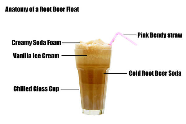 Soda Straws Photograph - Anatomy Of A Rootbeer Float by Michael Ledray