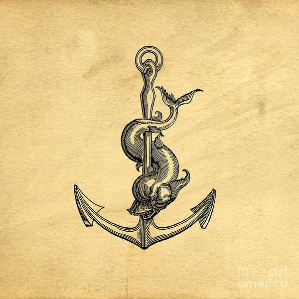 Wall Art - Drawing - Anchor Vintage by Edward Fielding
