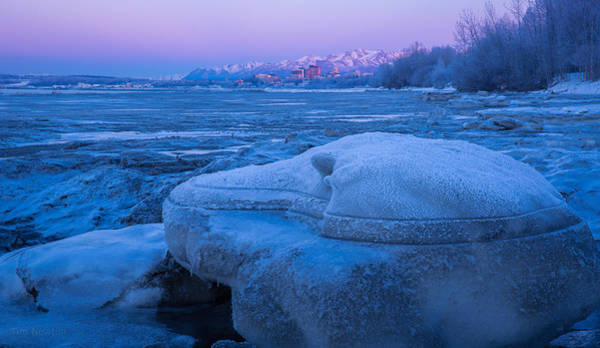 Photograph - Anchorage Icebergs by Tim Newton