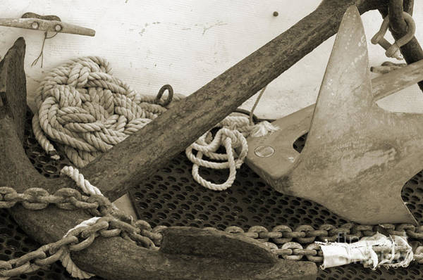 Shotwell Photograph - Anchors by Kathi Shotwell