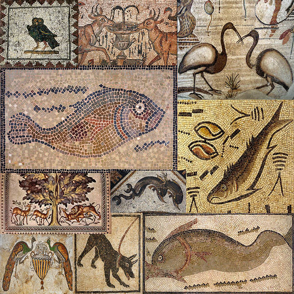 Photograph - Ancient Animal Mosaics by Andrew Fare