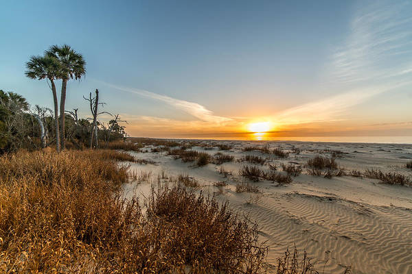 Photograph - Ancient Dunes Walk Sunrise - Dewees Island by Donnie Whitaker