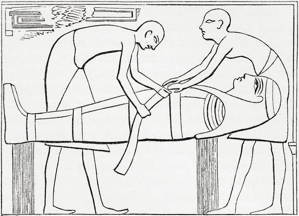 Mummy Drawing - Ancient Egyptians Swathing Or Wrapping by Vintage Design Pics